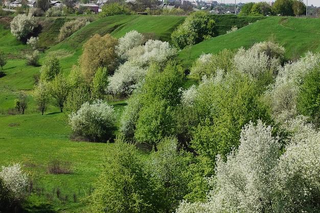 Vue campagne printanière avec route, villages fleuris de cerisiers en fleurs, collines. ukraine.
