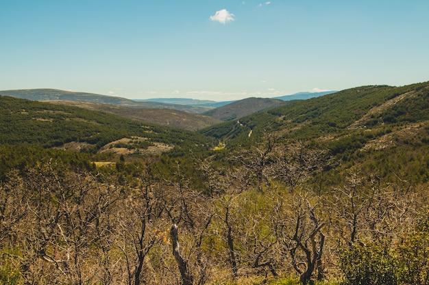 Vue sur la campagne vallonnée