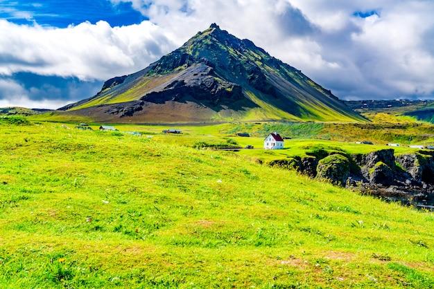 Vue sur le champ de fleurs, les maisons du village d'arnarstapi et la montagne stapafell dans l'ouest de l'islande.