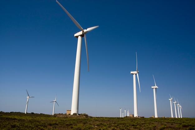 Vue d'un champ de moulins à vent géants.