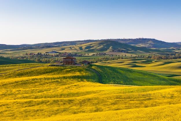 Vue sur les champs verts et jaunes de la toscane val d orcia