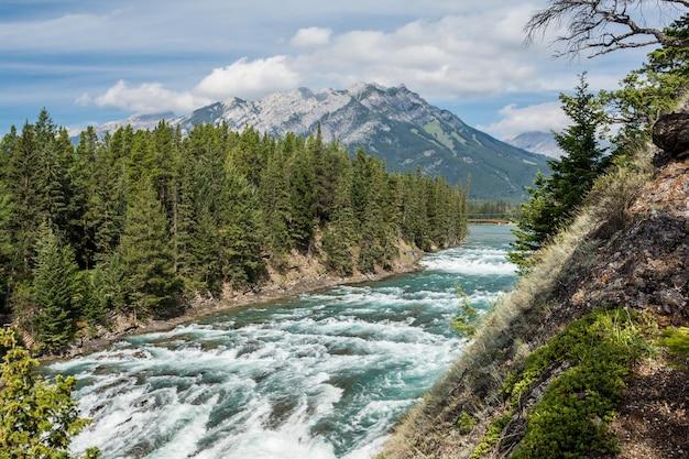 Vue sur la chute bow et la rivière bow
