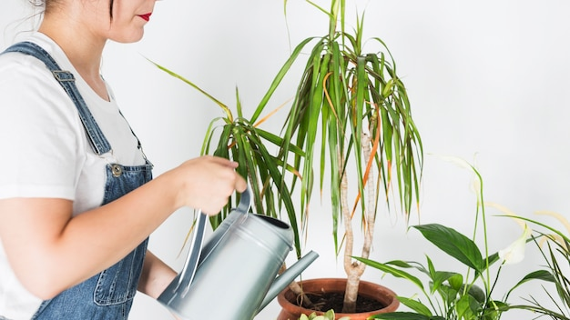 Vue de côté d'une femme arrosant une plante en pot