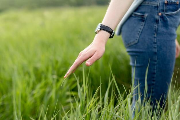 Vue côté, de, femme, par, herbe