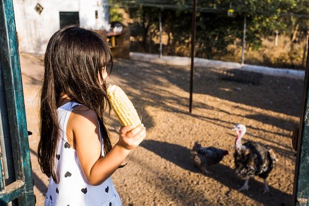 Vue de côté de la fille nourrir le maïs aux poulets à la ferme