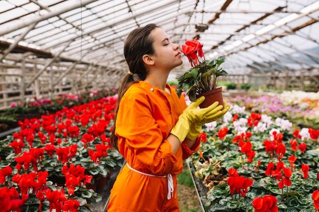 Vue de côté d'une jardinière femelle sentant une fleur rouge