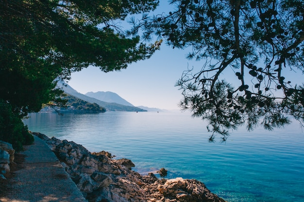 Vue de la côte de la mer adriatique été