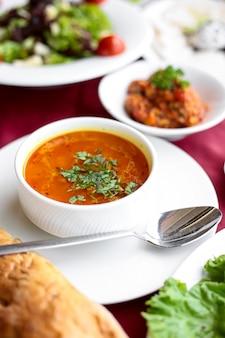 Vue de côté soupe de bouillon de poulet avec du pain sur une table servie