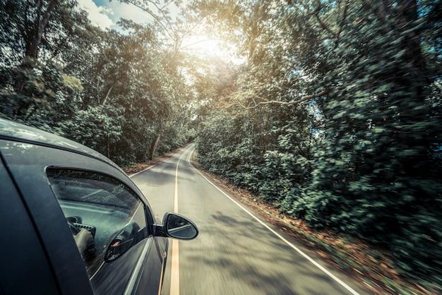 Vue côté, de, voiture, conduite, sur, route, dans, forêt, autoroute