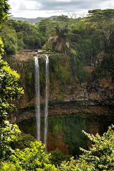 Vue depuis le pont d'observation de la cascade dans le parc naturel de chamarel à l'ile maurice