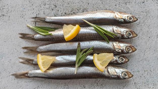 Vue de dessus arrangement de fruits de mer sains