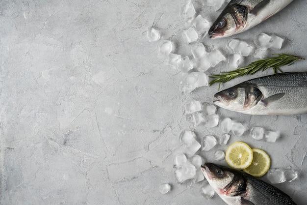 Vue de dessus arrangement de poisson avec de la glace