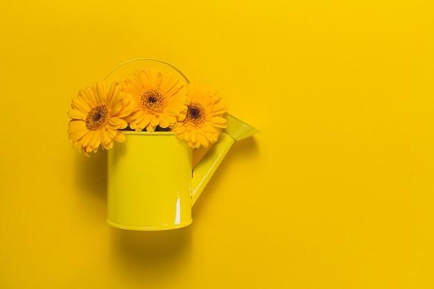 Vue de dessus de l'arrosage décoratif peut avec des fleurs