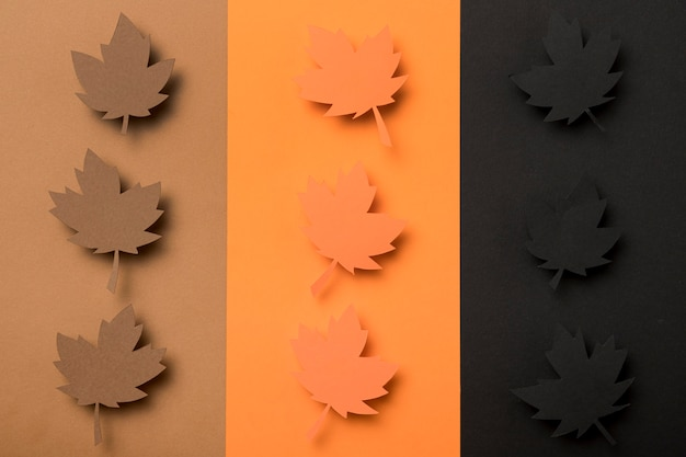 Vue de dessus assortiment de feuilles d'automne