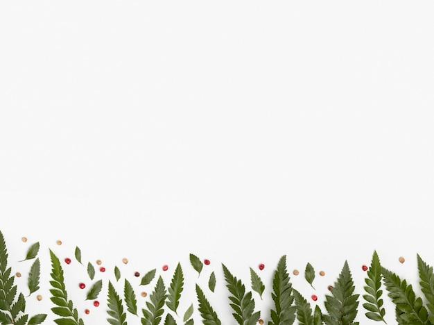 Vue de dessus assortiment de feuilles avec espace copie
