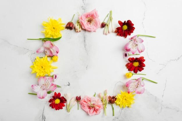 Vue de dessus de l'assortiment de fleurs de printemps