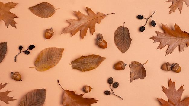 Vue de dessus de l'assortiment monochromatique de feuilles
