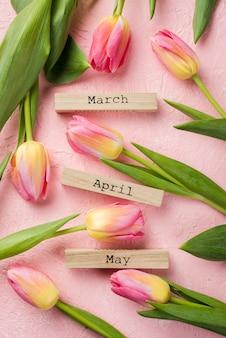Vue de dessus balises de mois de printemps avec des tulipes à côté
