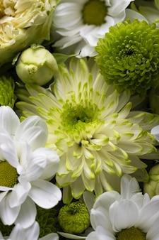 Vue de dessus de belles fleurs de différentes couleurs