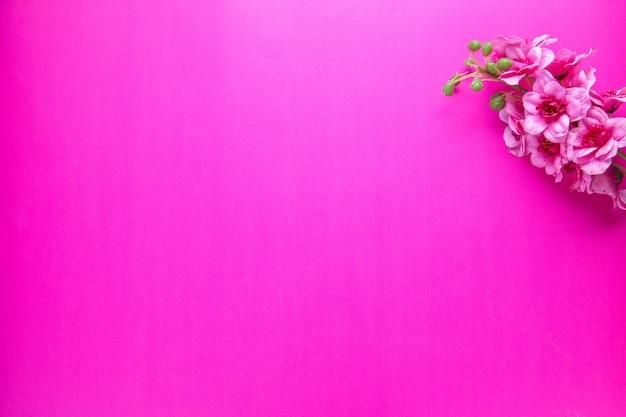 Vue de dessus de belles fleurs sur fond rose novruz printemps vacances colorées concept ethnique