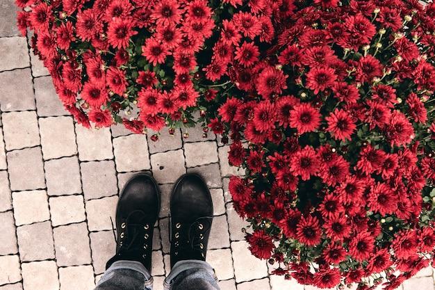 Vue de dessus de boot au marché aux fleurs de la ferme sur le foin. gros plan jambes en jeans et chaussures près des buissons de décoration d'automne de chrysanthèmes rouges.