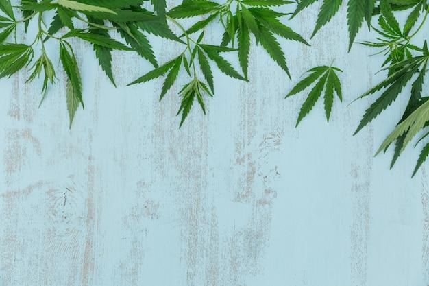 Vue de dessus de la bordure de feuilles de cannabis vert sur une surface en bois bleu clair avec espace de copie pour le texte