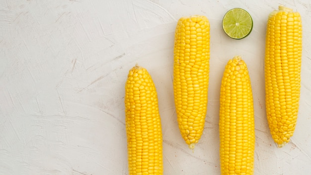 Vue de dessus bouillie de maïs avec espace de copie