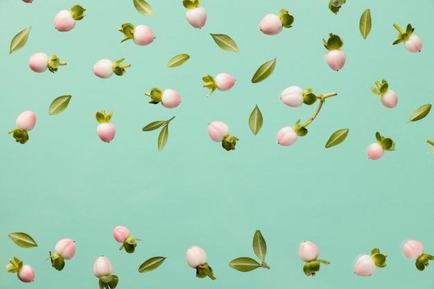 Vue de dessus des boutons floraux de printemps avec espace copie