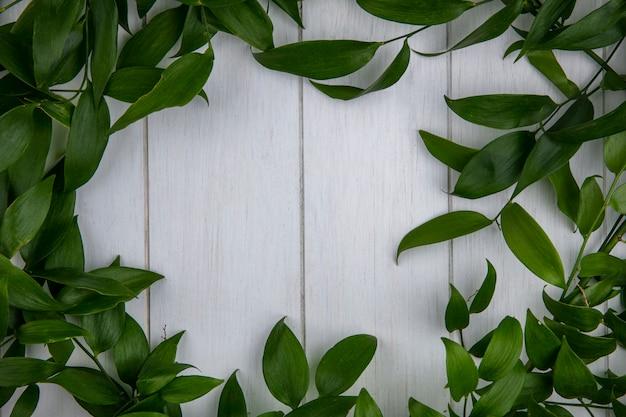 Vue de dessus des branches de feuilles sur une surface grise