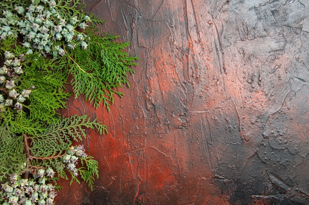 Vue de dessus des branches de pin avec des cônes sur une surface rouge foncé