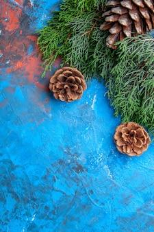 Vue de dessus des branches de pin pommes de pin sur une surface bleu-rouge