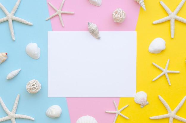 Vue de dessus cadre étoile de mer et coquillages avec feuille de papier vierge