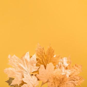 Vue de dessus cadre de feuilles jaunes avec copie-espace