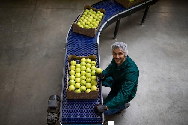 Vue de dessus des caisses pleines de pommes biologiques vertes transportées sur un tapis roulant dans une usine de transformation des aliments.