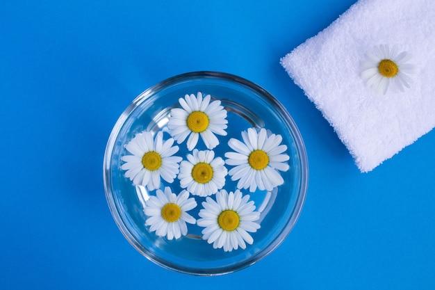 Vue de dessus de la camomille dans l'eau et une serviette blanche sur le bleu