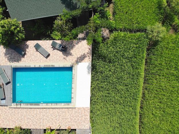 Vue de dessus champ de riz vert avec piscine belle texture
