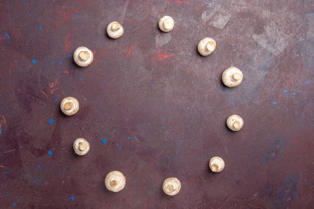Vue de dessus des champignons frais sur dark