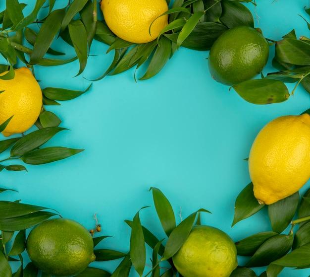 Vue de dessus des citrons verts et jaunes frais avec des feuilles sur bleu avec espace copie