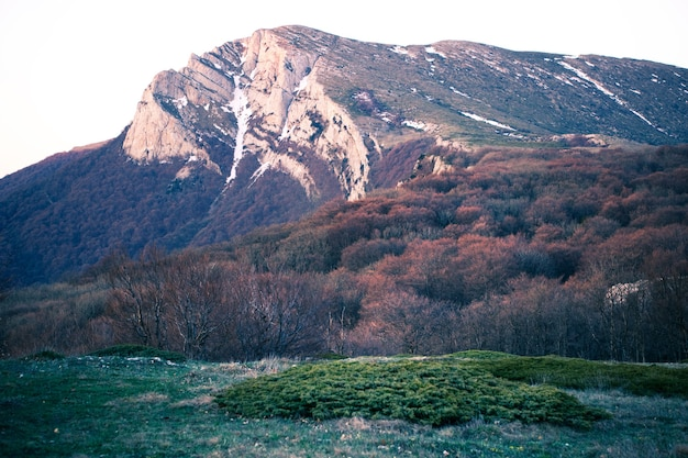 Vue de dessus d'une colline pittoresque couverte d'herbe et sans arbustes feuillus et ensoleillé matin d'automne. concept de trekking à travers les réserves naturelles et les montagnes