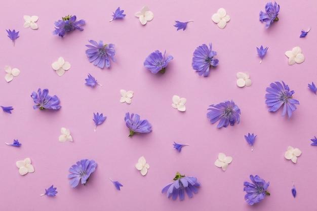 Vue de dessus composition de fleurs