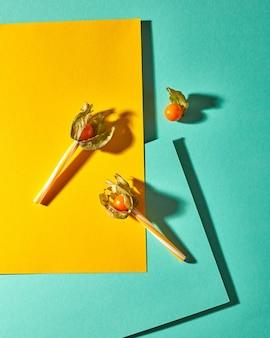 Vue de dessus composition avec plante physalis jaune et pailles en plastique pour jus sur fond de papier vert jaune bichromie avec des ombres douces. style moderne.