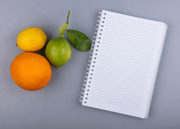 Vue de dessus copie espace bloc-notes avec citron orange et citron vert sur fond gris