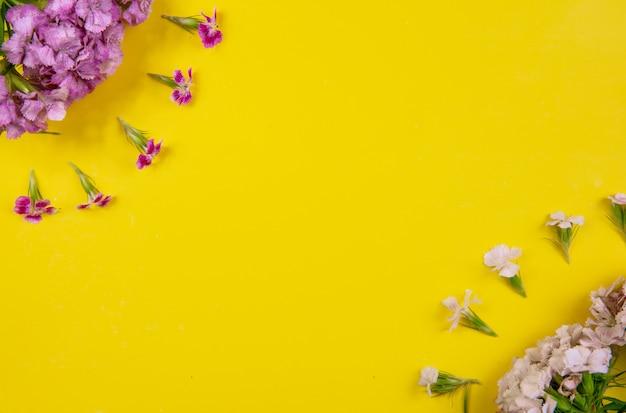 Vue de dessus copie espace fleurs blanc et rose sur fond jaune