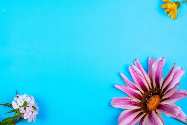 Vue de dessus copie espace marguerite pourpre avec fleur jaune et blanche sur fond bleu