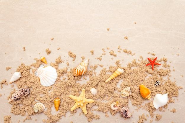 Vue de dessus des coquillages avec du sable