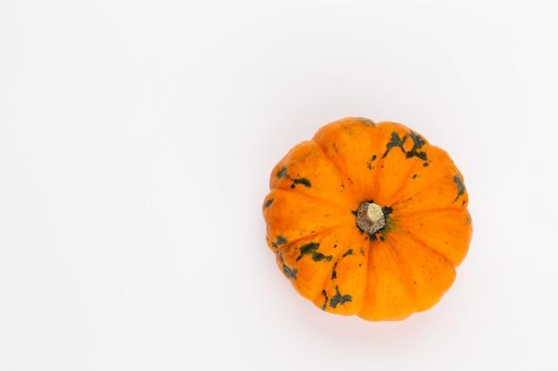 Vue de dessus créative composition automne laïque plat. cadre en espace de copie de fond de papier de couleur citrouilles. modèle de récolte automne cartes d'invitation anniversaire halloween thanksgiving.