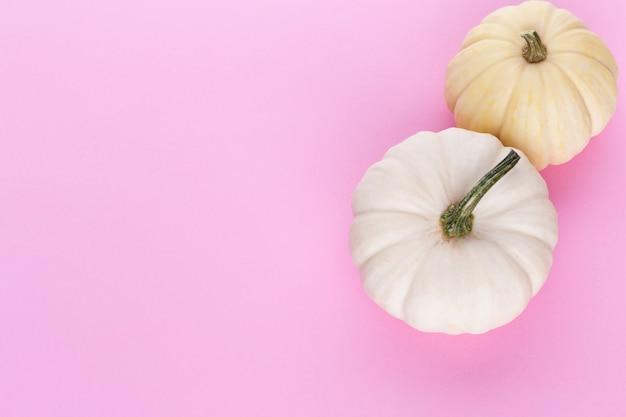 Vue de dessus créative composition automne laïque plat. cadre en espace de copie de fond de papier de couleur citrouilles.