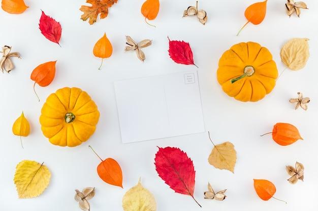 Vue de dessus créative composition automne laïque plat. citrouilles séchées fleurs orange feuilles fond