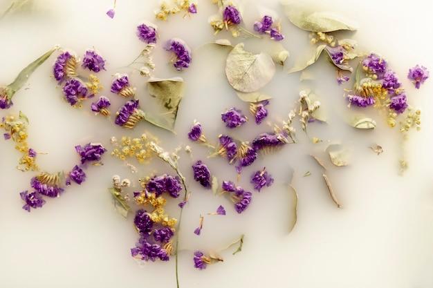 Vue de dessus délicates fleurs violettes dans de l'eau de couleur blanche