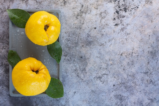 Vue de dessus de deux coings pomme fraîche sur gris.